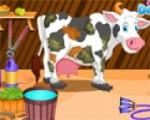 العاب تنظيف البقر فى الحديقة