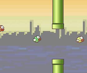 الانابيب و الطيور