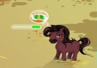لعبة رعاية الحصان