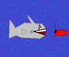 لعبه غذاء القرش