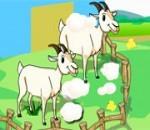 العاب مزارع الاغنام والابقار